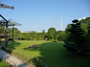 芝生が一面に広がる桃山の庭。右側に電信柱のようなものが見えるのが少し残念。