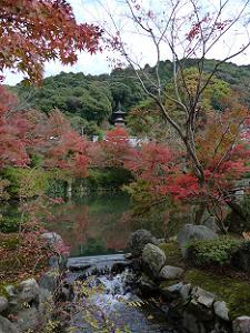 放生池越しに見える多宝塔と背後の山