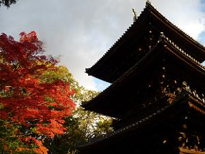 金戒光明寺の三重塔と紅葉