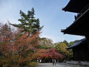 南禅寺の紅葉2009年