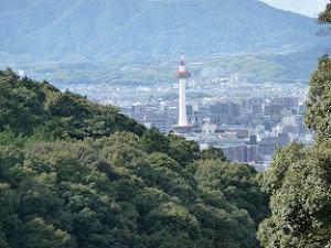 清閑寺から見た京都タワー