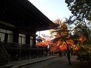 夕日できらきらと輝く真如堂の紅葉