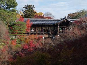 東福寺の紅葉2009年
