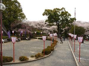 石清水八幡宮山上の駐車場付近