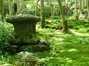 苔と調和した石の置物