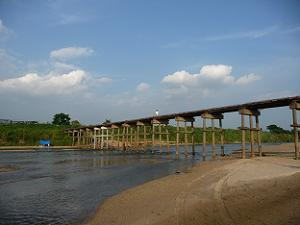 下から復活した流れ橋を眺める