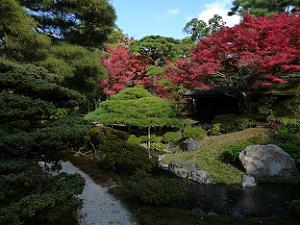 御内庭の紅葉