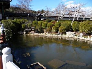 山門前の池