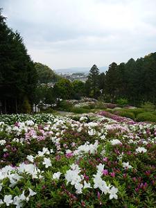 山から見下ろした庭園
