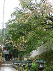 長楽寺の参道