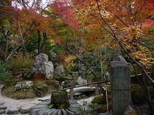 宝楽園の紅葉