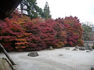 石庭の紅葉