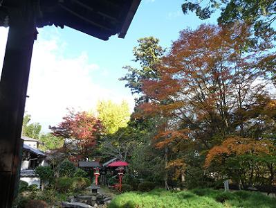 紅葉が一番きれいに見える場所から撮影