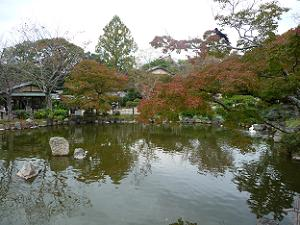 池の周囲の紅葉