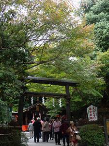 野宮神社の鳥居付近