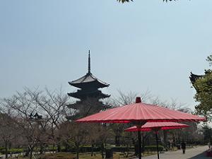五重塔と赤い傘