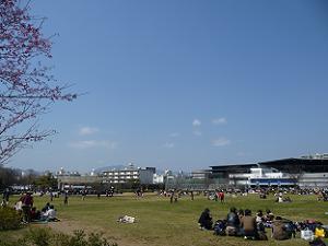 梅小路公園と京都水族館