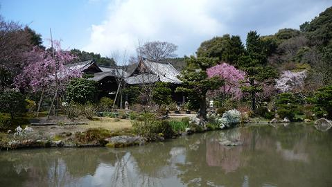 庭園の南東からの眺め