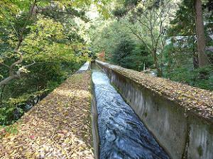 水路閣へと流れる水