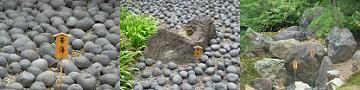 苦海の大小の石
