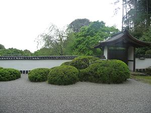 庭園の右側