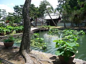 総門付近の池