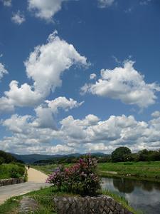 空と賀茂川