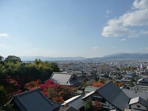 裏山からの眺め