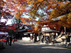 今熊野観音寺の境内