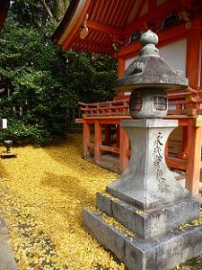 金色のじゅうたん