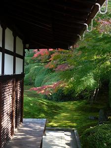 建物の脇から見た庭園