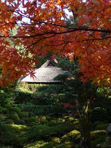 紅葉と芭蕉庵