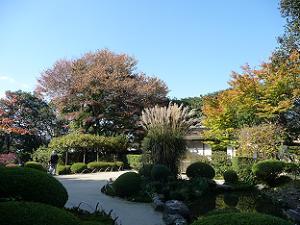 秋の気配が漂う庭園