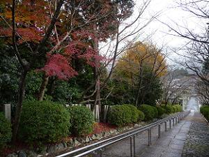 宗忠神社の石段