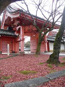 赤門近くの敷き紅葉