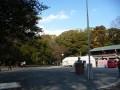 巳年の始まりは石清水八幡宮に初詣・2013年