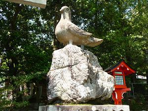 三宅八幡宮の鳩