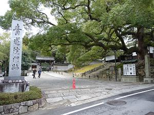 青蓮院の入口