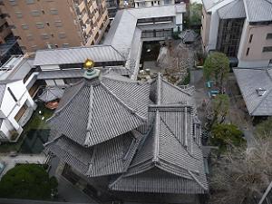 9階から見た本堂