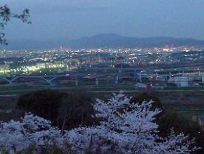 展望台から見た夜景