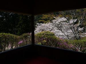 福寿亭からの眺め