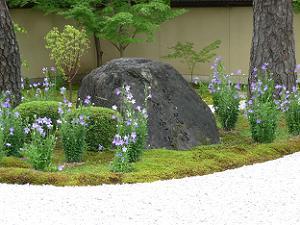 紫式部邸宅跡の石碑