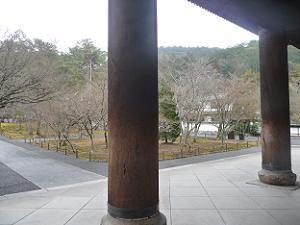 三門の太い柱