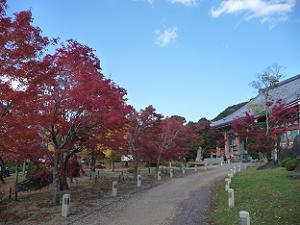 金堂と紅葉