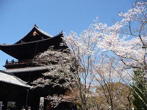 青空と三門と桜