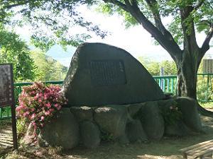 谷崎潤一郎の碑とサツキ
