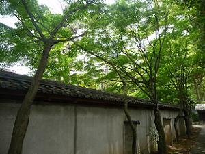源氏庭の塀