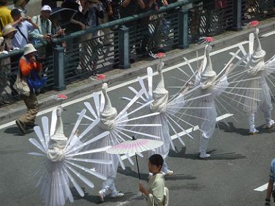 翼を広げた鷺