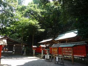 境内 境内 嵐山の木々に埋もれてしまいそうなほど狭い境内です。 でも、どことな...  京都観光