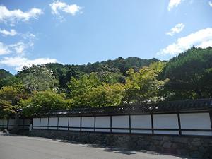 天授庵の塀